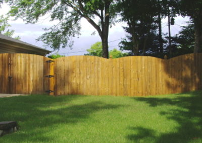 Fence After Our Treatment